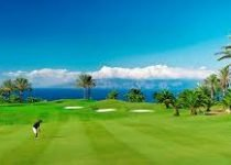 immobilier golf